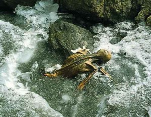 Ötzi the Iceman was found face-down, his lower body still frozen in ice.